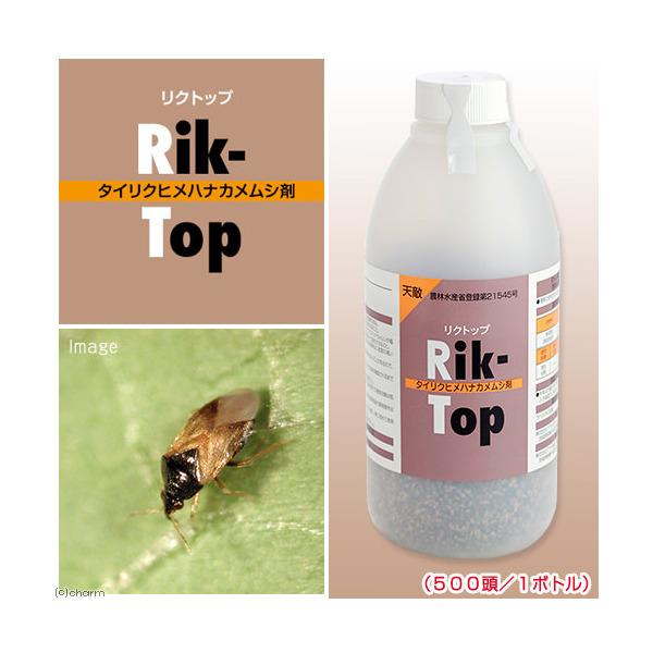 メーカー直送 天敵製剤 リクトップ タイリクヒメハナカメムシ剤(500頭/1ボトル)アザミウマ類駆除 同梱不可・別途送料