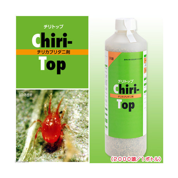 メーカー直送 天敵製剤 チリトップ チリカブリダニ剤(2000頭/1ボトル)ハダニ類駆除 同梱不可・別途送料