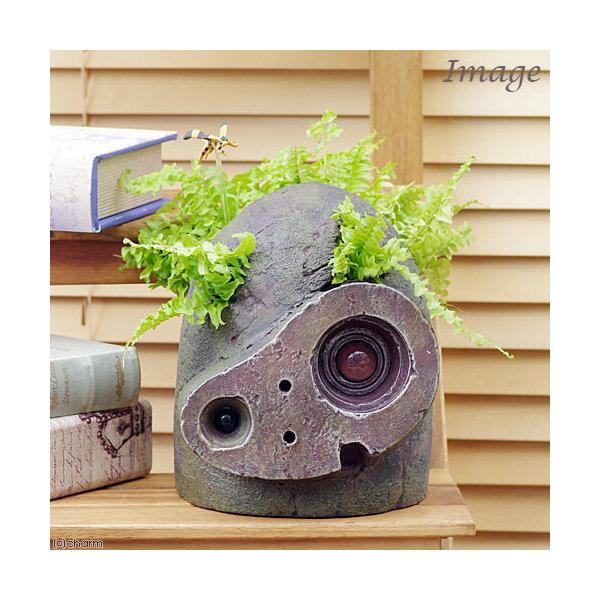 (観葉植物)ジブリプランター 天空の城ラピュタ ロボット兵の思い ネフロレピス ツデー仕立て 植え込み完成品