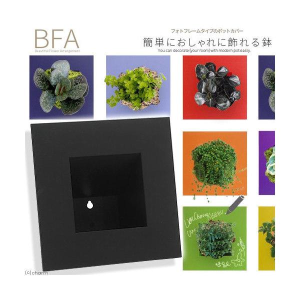 立て掛け鉢 BFA-220 黒(1個)(W22×D22×H11cm)