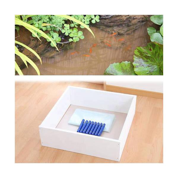 お手軽ビオトープ 池製作キット(W60×D60×H18.5cm) 本体 ホワイト