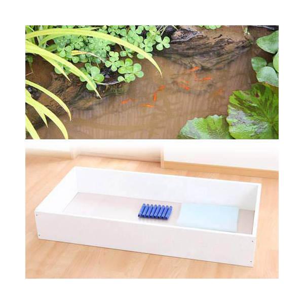 お手軽ビオトープ 池製作キット(W120×D60×H18.5cm) ホワイト 沖縄別途送料