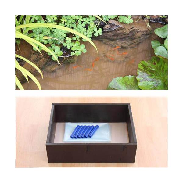 お手軽ビオトープ 池製作キット(W60×D45×H18.5cm) ブラウン