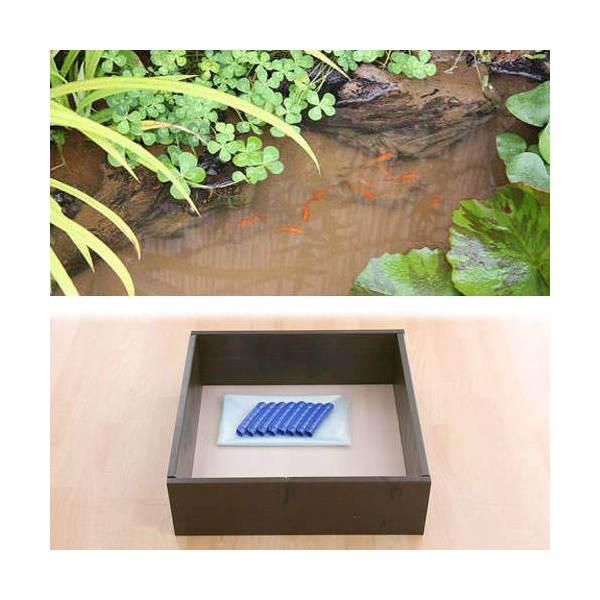 お手軽ビオトープ 池製作キット(W60×D60×H18.5cm) ブラウン