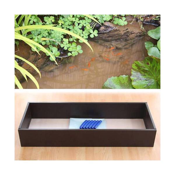 お手軽ビオトープ 池製作キット(W120×D45×H18.5cm) ブラウン 沖縄別途送料