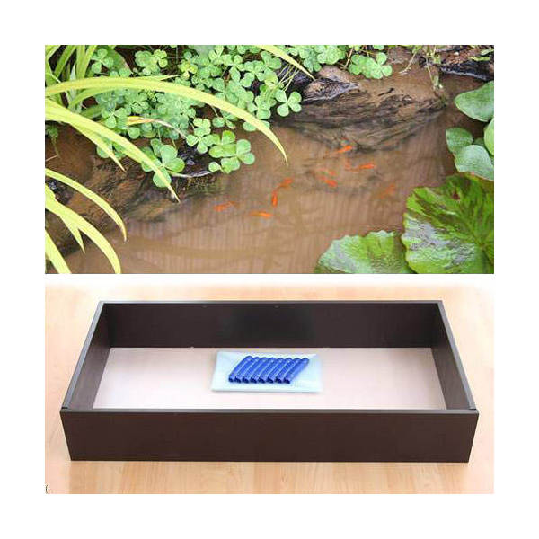 お手軽ビオトープ 池製作キット(W120×D60×H18.5cm) ブラウン 沖縄別途送料