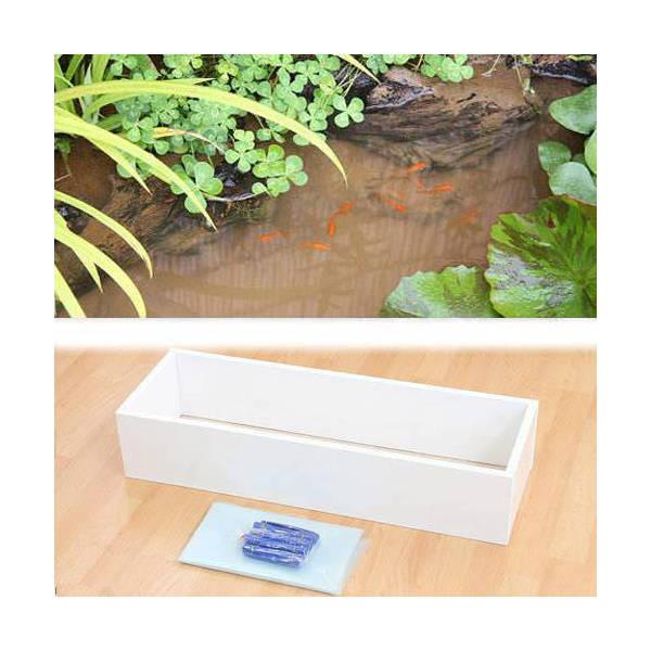 お手軽ビオトープ 池製作キット(W90×D30×H18.5cm) ホワイト