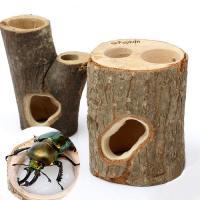 フジコン プレミアム インセクトシェルター M 昆虫 カブトムシ クワガタ のぼり木 レイアウト用品 エサ皿