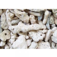 C.P.Farm直送 サンゴ砂 コーラルピース XLサイズ 軽洗浄済み 10kg(約10L)(0.45個口相当)別途送料