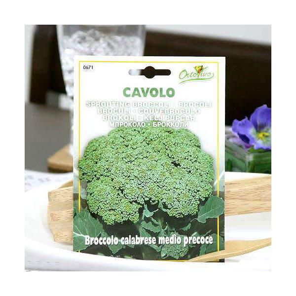 アウトレット品 HORTUS イタリア野菜の種 スプラウティングブロッコリー・プレコーチェ Art.671 家庭菜園 訳あり
