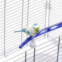 スドー 起き上がりこぼし 鳥 おもちゃ