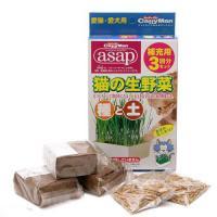 キャティーマン 猫の生野菜種と土 補充用3回分セット 猫草 ドギーマン