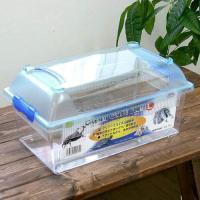 三晃商会 SANKO CLEAN CASE FLAT クリーンケースフラット(L)(375×220×184mm)プラケース 虫かご飼育容器