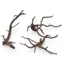 形状お任せ 煮込み済み 極上流木 Sサイズ(約10~20cm)3本