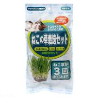 アラタ ねこ草栽培セット 3回分 猫草