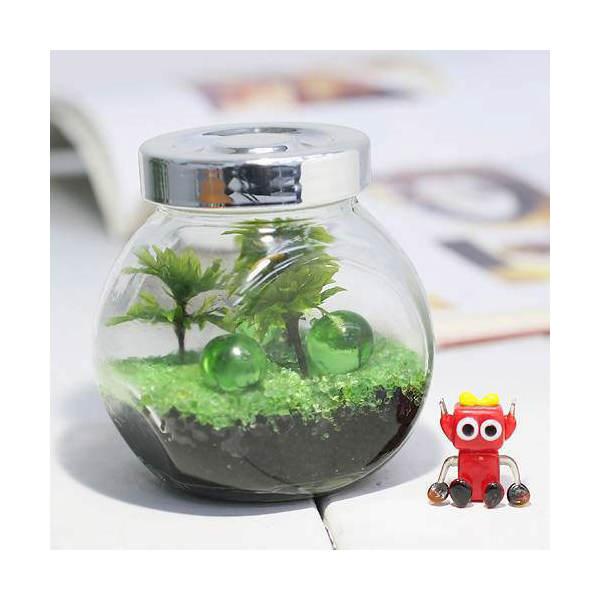(観葉植物/苔)私の小さなテラリウム ~オオカサゴケ~(グリーン)(1セット)(説明書付) 本州・四国限定