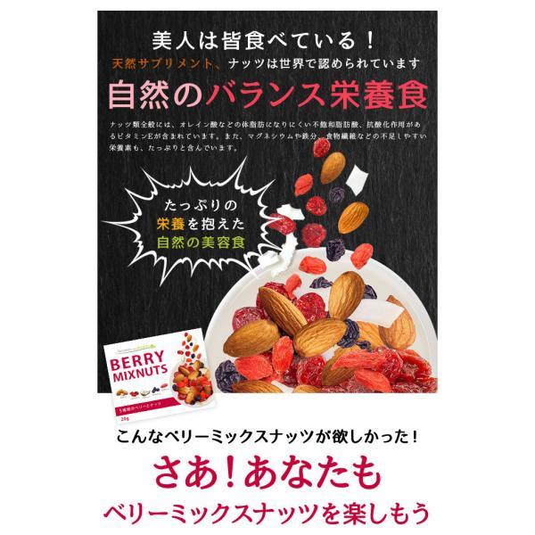 【アウトレット】【送料無料】ベリーミックスナッツ 小分け 贅沢な5種類 20g×20袋 400g 塩味 栄養成分豊富 ポスト投函<メール便>