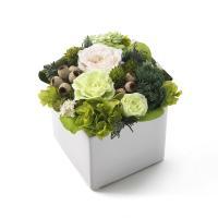 【第一園芸】プリザーブド アレンジ 白×グリーン
