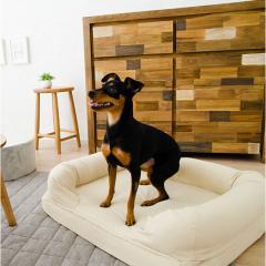 neDOGko (ねどっこ) 送料無料 3Dベッド Lサイズ シニアタイプ 高反発ウレタン 綿100% ペットベッド ワンちゃん 犬 猫 通気性 丸洗い 立ち上がり 介護 カドラー アイボリー