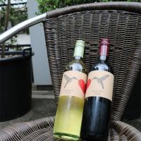 アルゼンチン産エレヒード赤・白ワイン2本セット(ボックス付) 750ml×2本