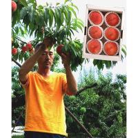 【自然派果物】完熟採れたて 山梨県林さんの桃 1.5kg(5-7玉)