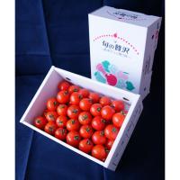 【自然派野菜】新鮮採れたて アグリゲート生産者の会の中玉トマト(カンパリ)3kg【産地直送】【ビッグサイズ】