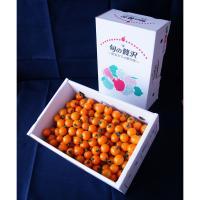 【自然派野菜】新鮮採れたて アグリゲート生産者の会のミニトマト(オレンジ千果)3kg【ビッグサイズ】【産地直送】