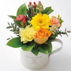 フラワーギフト ガーベラカップアレンジ イエロー 生花 送料無料の画像