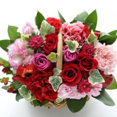 フラワーギフト ミニョンバスケット ピンクレッド 生花 送料無料 誕生日 記念日 お祝い ギフトの画像
