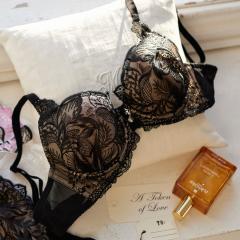 フランデランジェリー(fran de lingerie)【らくらく補正】 emmy エミー コーディネートブラジャー E-Gカップ
