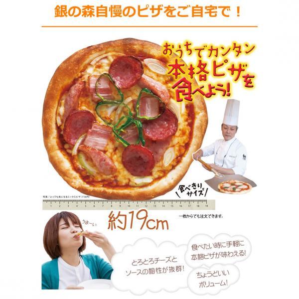 家族でピザセット 【5%OFFクーポン利用可能】【コード:C2Y8WET】