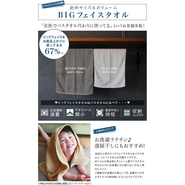 バスタオル 制菌 防臭 同色2枚セット ホテルスタイル タオル 日本製 スモークブルー2枚