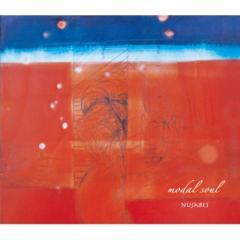 【送料無料】 Nujabes ヌジャベス / modal soul (2枚組アナログレコード)【LP】