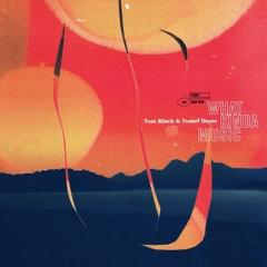 【送料無料】 Tom Misch / Yussef Dayes / What Kinda Music【CD】