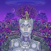 Erykah Badu エリカバドゥ / New Amerykah Part Two:  Return Of The Ankh【CD】