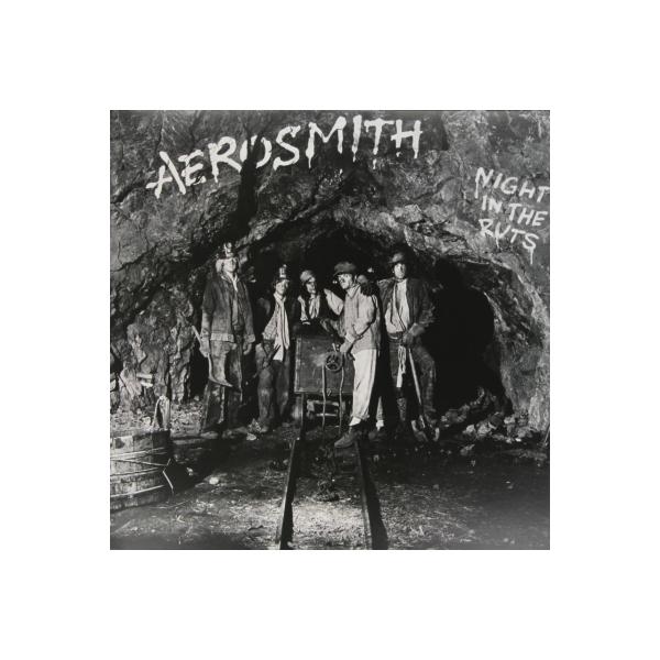 Aerosmith エアロスミス / Night In The Ruts (180グラム重量盤) Limited Rsd 2014 【LP】