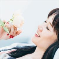 原田知世 ハラダトモヨ / 恋愛小説2 ~若葉のころ (+DVD)【初回限定盤】【SHM-CD】