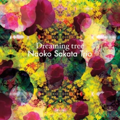 坂田尚子 サカタナオコ / Dreaming Tree【CD】