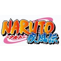 NARUTO-ナルト- 疾風伝 ナルトとサスケの章 3【DVD】