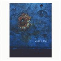 Mr.Children / himawari【CD Maxi】