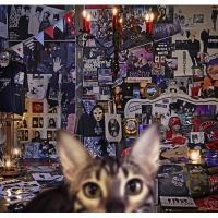 BUCK-TICK バクチク / CATALOGUE 1987-2016 【初回限定盤A】(4SHM-CD+Blu-ray)【SHM-CD】