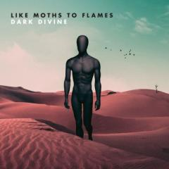 Like Moths To Flames / Dark Divine【LP】