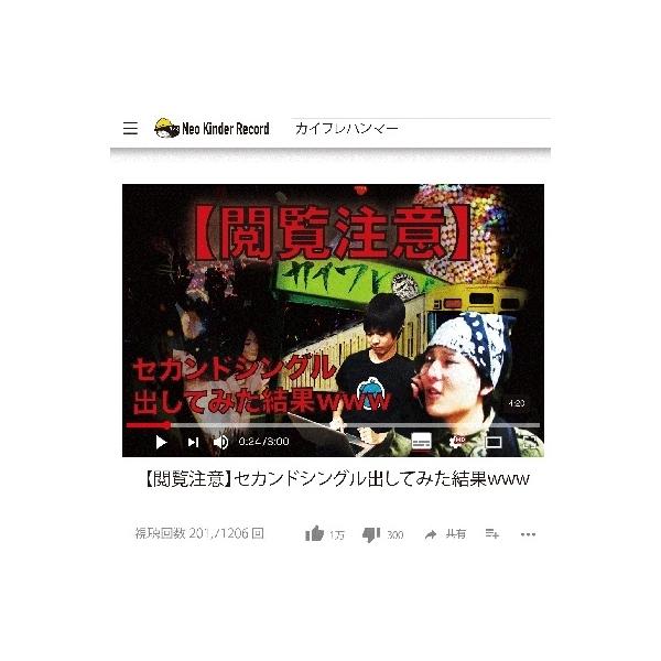 カイワレハンマー / 【閲覧注意】セカンドシングル出してみた結果www【CD Maxi】