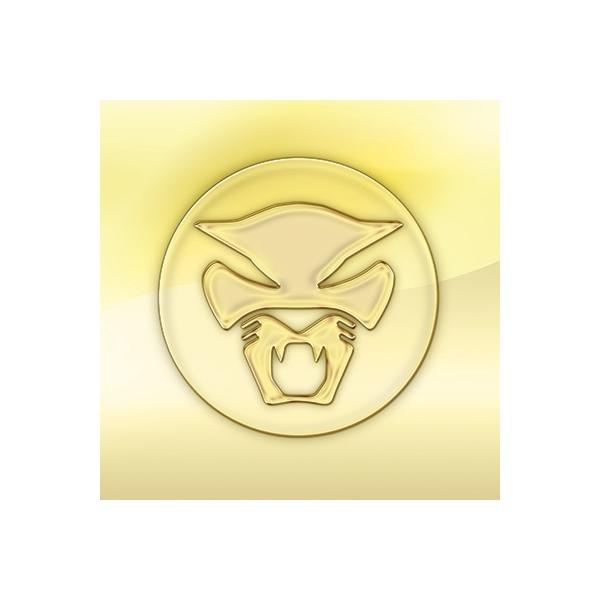 Thundercat / Golden Age Of Apocalypse【CD】