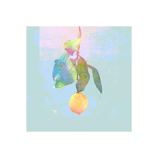 米津玄師 / Lemon 【映像盤 初回限定盤】(CD+DVD)【CD Maxi】