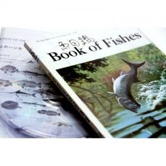 【送料無料】 サカナクション  / 魚図鑑 【期間限定生産盤】(2CD+魚図鑑)【CD】