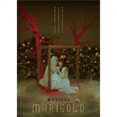 【送料無料】 TRUMPシリーズ 10th ANNIVERSARY ミュージカル『マリーゴールド』【DVD】