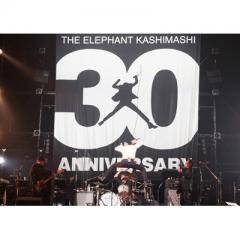 """エレファントカシマシ(エレカシ) / 30th ANNIVERSARY TOUR""""THE FIGHTING MAN""""FINAL さいたまスーパーアリーナ 【初回限定盤】(2Blu-ray+フォトブック)【BLU-RAY DISC】"""