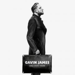 Gavin James / Only Ticket Home【LP】