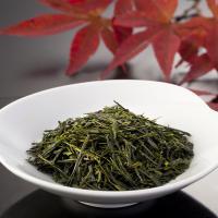 【LOHACO限定/送料無料】秋旬新茶800と急須セット今だけ「和三盆糖」のオマケ付き